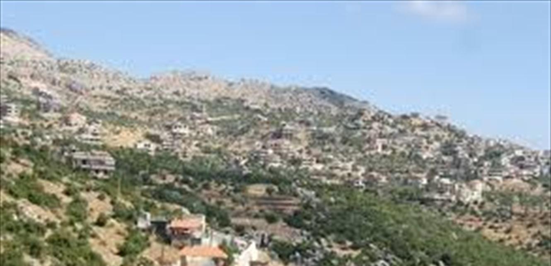 دورية معادية خطفت راعيا لبنانيا في كفرشوبا