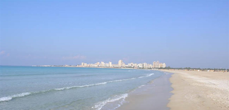 تحذير الى اللبنانيين.. احتمال نفوق اسماك النفيخة السامة على شاطىء صور