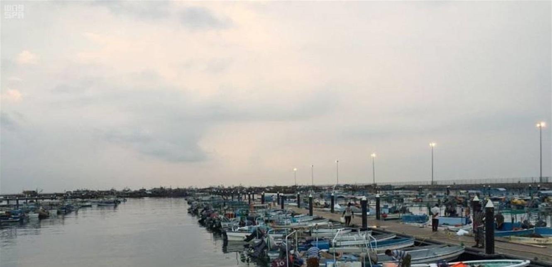 نقابة الوكلاء البحريين: للابقاء على استثناء أعمال المرافىء من قرار الاقفال العام