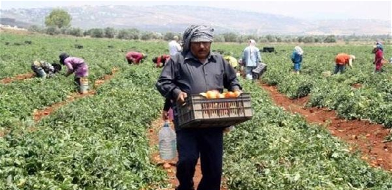 المزارعون: لتمديد إقفال أسواق الجملة حتى السادسة مساء
