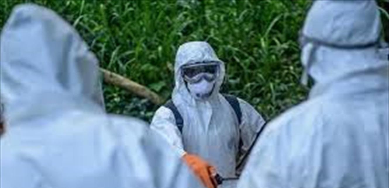 أسرار كورونا تتكشف.. فيروس مشابه له وُجد بهذا البلد منذ سنوات!