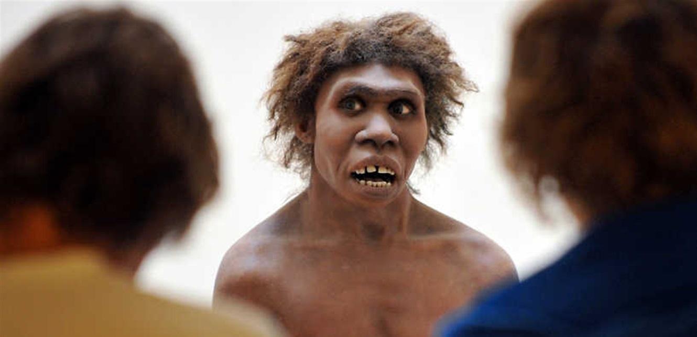 ظاهرة نادرة 'قضت على إنسان نياندرتال' قبل 42 ألف سنة