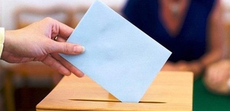 هل من انتخابات فرعية؟