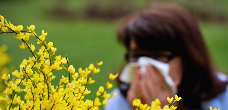 تنبيه.. هكذا تفرّق بين أعراض 'حساسية الربيع' وكورونا
