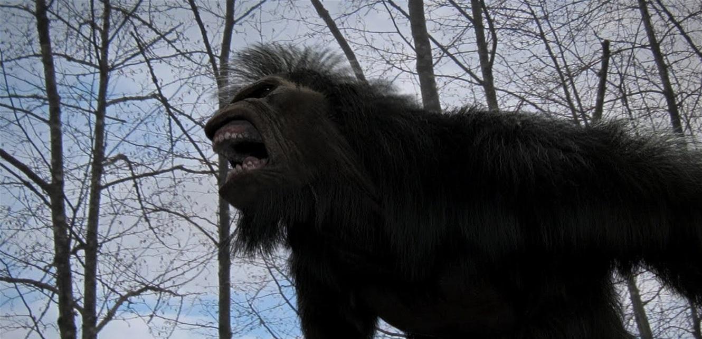 'البيغ فوت'… كشف مثير عن 'الكائن الأسطوري'