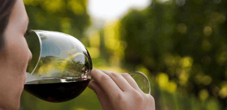سفير المنتجات في الأسواق الأجنبية.. النبيذ اللبناني طاقة تصديريّة كامنة تفتقر إلى الأسواق الخارجية!