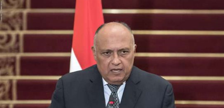 وزير خارجية مصر يزور لبنان.. ورسالة من السيسي إلى عون