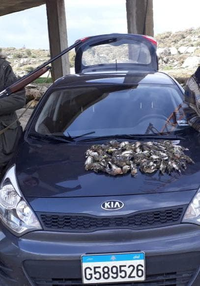 عودة مسلسل سرقات سيارات 'الكيا' في طرابلس.. تُهرّب الى الخارج